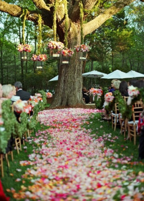 Diy outdoor spring wedding