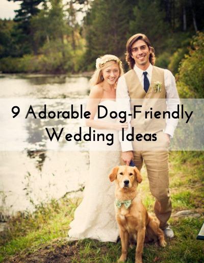 Dog Wedding Ideas 9