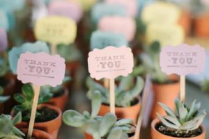 Succulent Wedding Favors