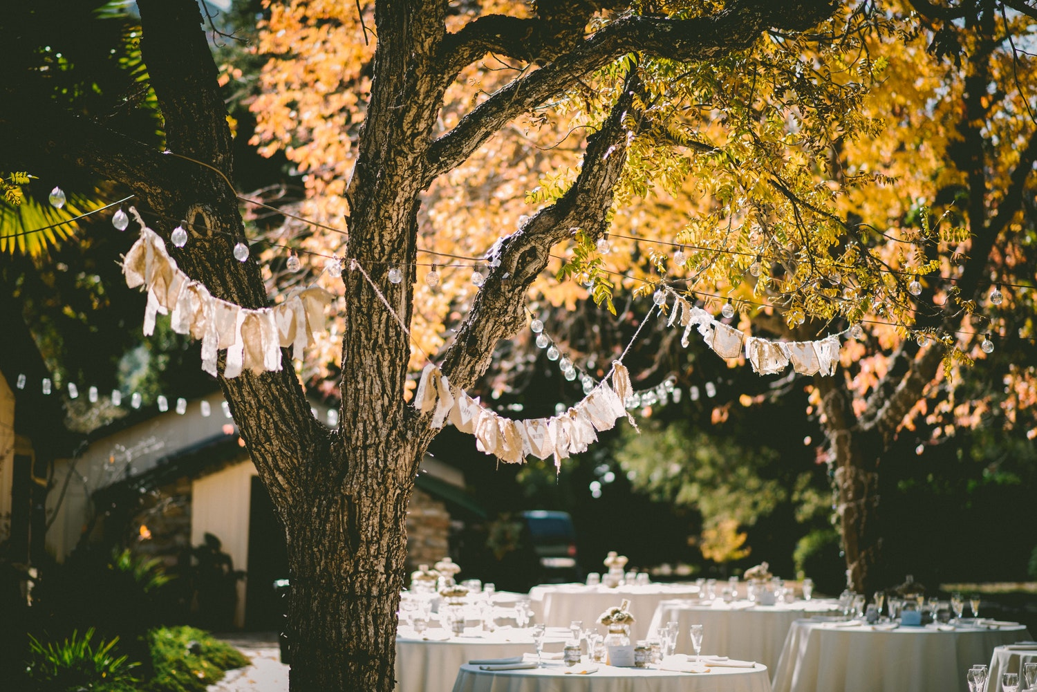 Backyard Wedding · Via Unsplash